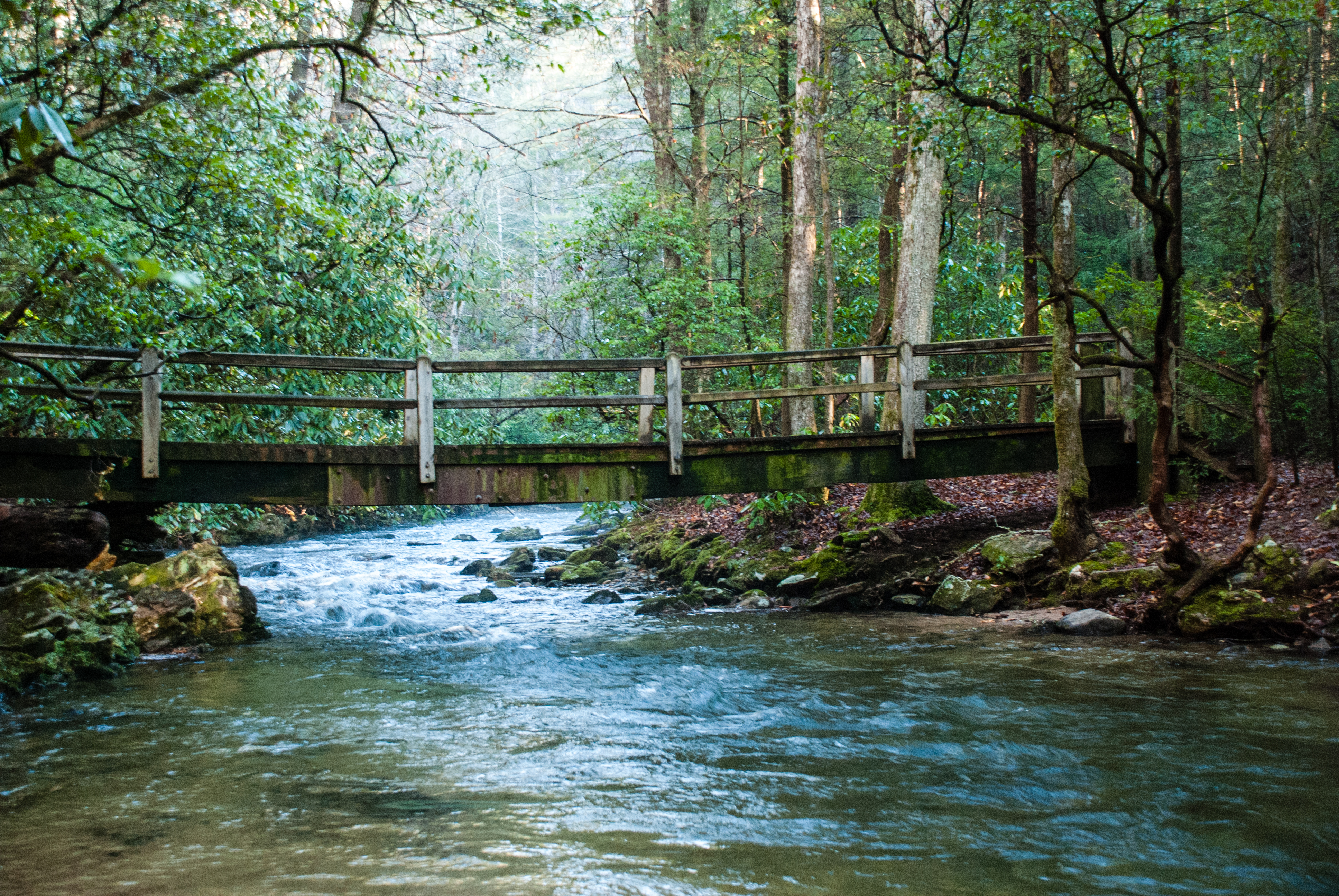 Smithgall woods state park cabin in helen ga for Fishing in atlanta