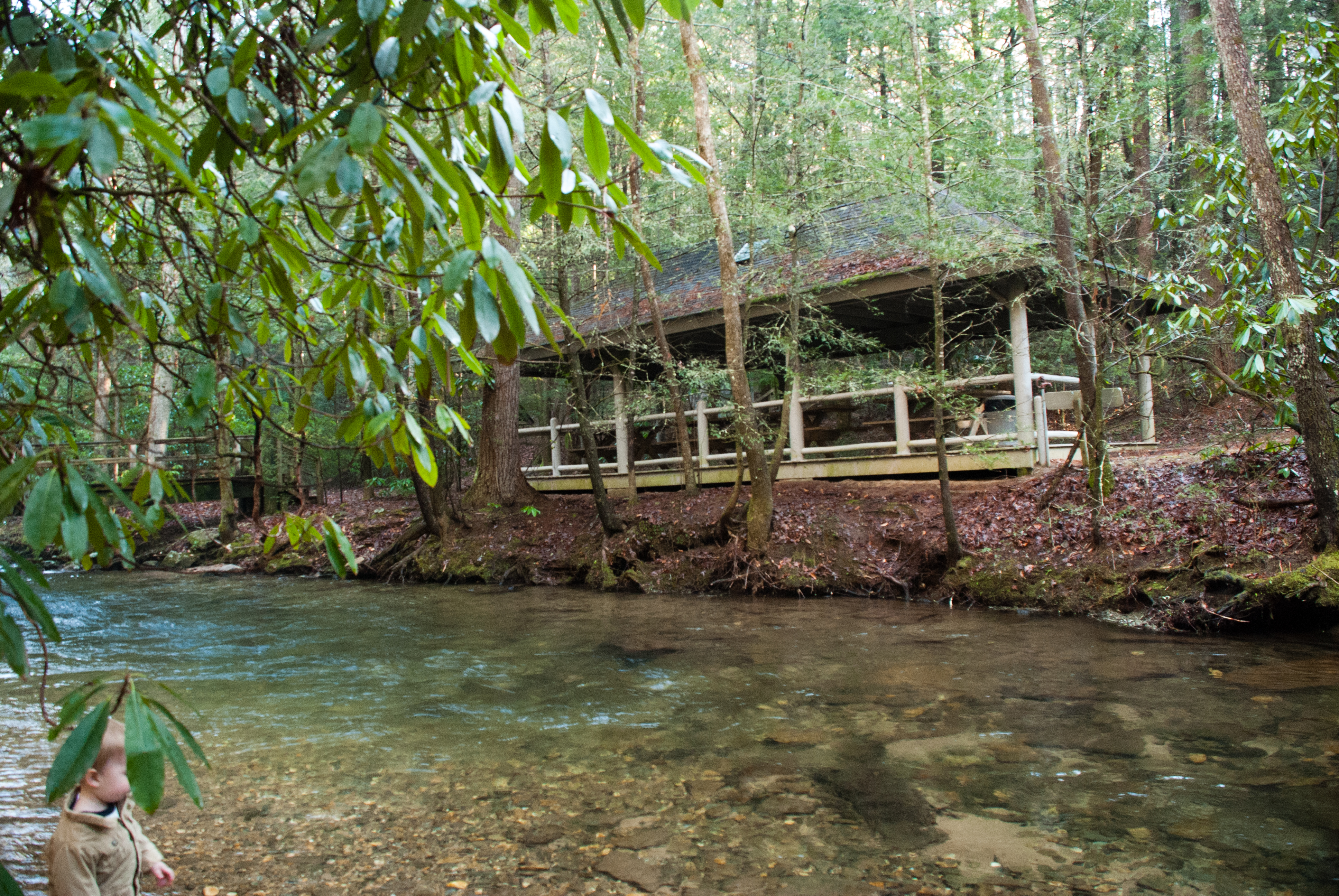 Smithgall Woods State Park Cabin In Helen Ga