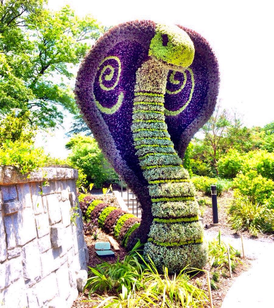 Atlanta Botanical Garden Skyline Gardens: Imaginary Worlds & Four Seasons At Atlanta Botanical Garden