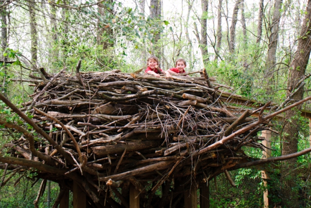 Chattanooga Nature Center - summer vacation ideas for Atlanta families