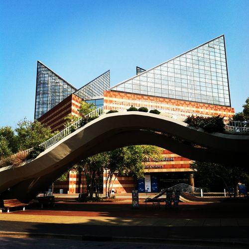 Tennessee Aquarium - summer vacation ideas for Atlanta families